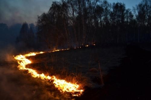 Даже авиацию задействовали. В районе трассы «Магнитогорск - Челябинск» продолжают тушить лесной пожар