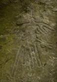 Как связаны ГЛЦ и плато Наска? Ученые нашли на Банном артефакты каменного века