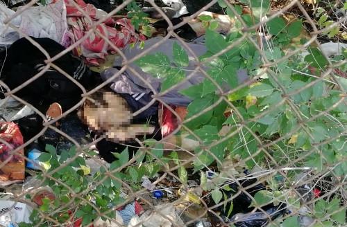 Насилия и криминала нет. В Магнитогорске в куче мусора обнаружили мертвое тело