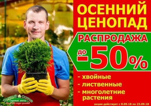 Осенью падают не только листья, но и цены! Скидка 50% на растения для вашего сада в «Зелёном острове»!
