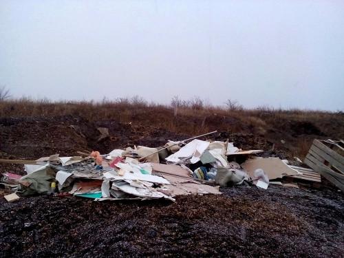 Ночной мусорщик. В Магнитогорске житель устроил темную благоустроенной территории и поплатился