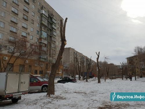 «Опасений быть не должно». Замглавы ответил на критику по поводу санитарной обрезки деревьев