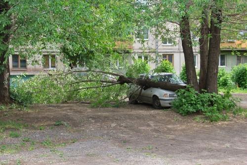 Парковались не по правилам. В Орджоникидзевском районе «неправильных» водителей оштрафовали на 19 тысяч рублей