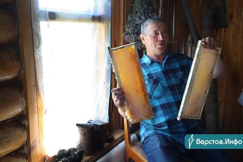 Мёдом намазано. Пенсионер из Чесменского района открыл на своей пасеке пчелиный SPA и попал на Первый канал