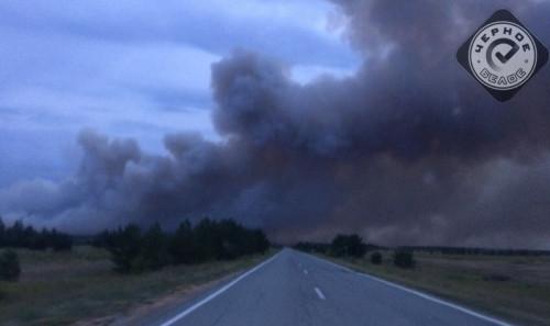Площадь 110 гектаров! Под Магнитогорском до самого утра горел лес