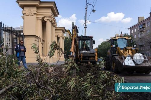Сразу около двух городских школ вырубили старые деревья. Теперь там будут парковки