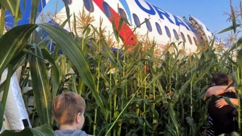 Во как! Бортпроводница самолета, приземлившегося на кукурузном поле, оказалась выпускницей МГТУ им. Г. И. Носова