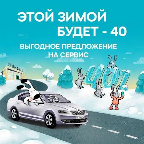 Для поклонников марки со стажем! Зимний сервис ŠKODA с выгодой до 40%