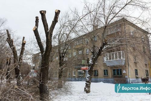 Раз в десять лет. В Магнитогорске продолжается омолаживающая обрезка деревьев