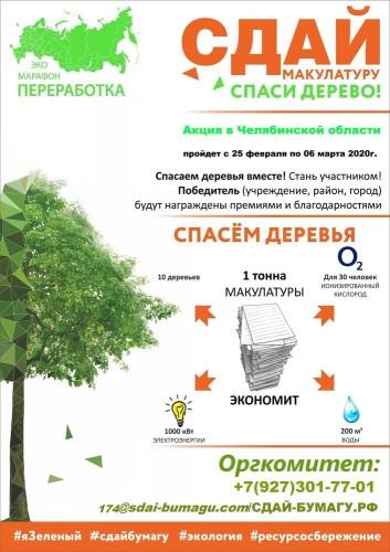 Спасти дерево, избавившись от газет. В Магнитогорске скоро начнут принимать макулатуру