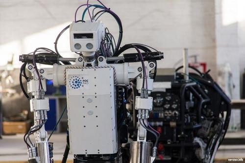 «Вкалывают роботы, а не человек». Магнитогорская компания предлагает уникальный проект в сфере розничной торговли