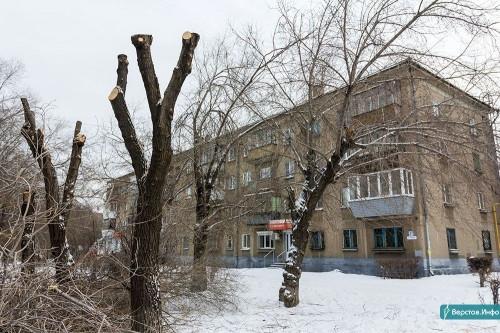 Работа кипит. В Магнитогорске за неделю подстригли и омолодили более 200 деревьев