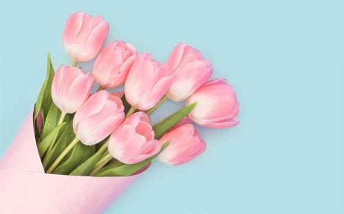В подарок – приятные цены. Цветочная лавка откроется 1 марта на Центральном крытом рынке