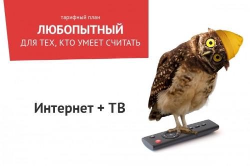 «Любопытный» – новый способ получить быстрый и недорогой интернет от ТТК в Магнитогорске