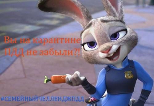 Хитры на выдумки. ГИБДД Магнитогорска объявила челлендж для тех, кто на карантине