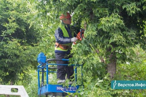 Формируют правильные кроны. В Магнитогорске продолжается обрезка деревьев