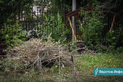 Очень уж жители просили. Во дворе дома № 124/1 по проспекту Ленина  вырубили часть деревьев