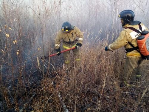 На юге Челябинской области тушат крупный природный пожар. Огнём охвачено 980 гектаров